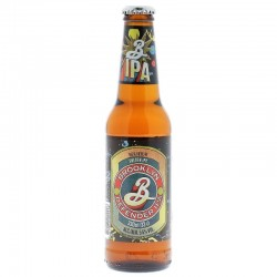 BROOKLYN DEFENDER IPA 33CL