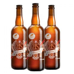 biere - BS AMBREE BIO 3*0.75L - CERTIFIE FR-BIO-01 - Planète Drinks