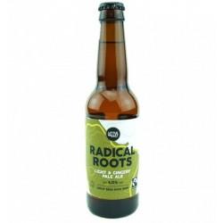 biere - LITTLE VALLEY RADICAL ROOTS GINGER PALE 33CL- CERTIFIE FR-BIO-01 (MB) - Planète Drinks