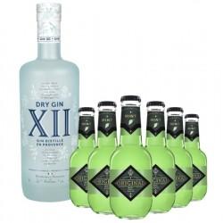 COFFRET ALCOOL - BOX GIN XII 1*70CL + TONIC MINT 6*20CL - Planète Drinks